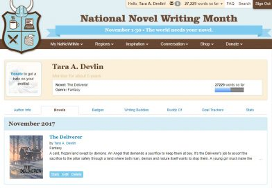 My NaNoWriMo 2017 Experience, or Why I Won't Do It Again